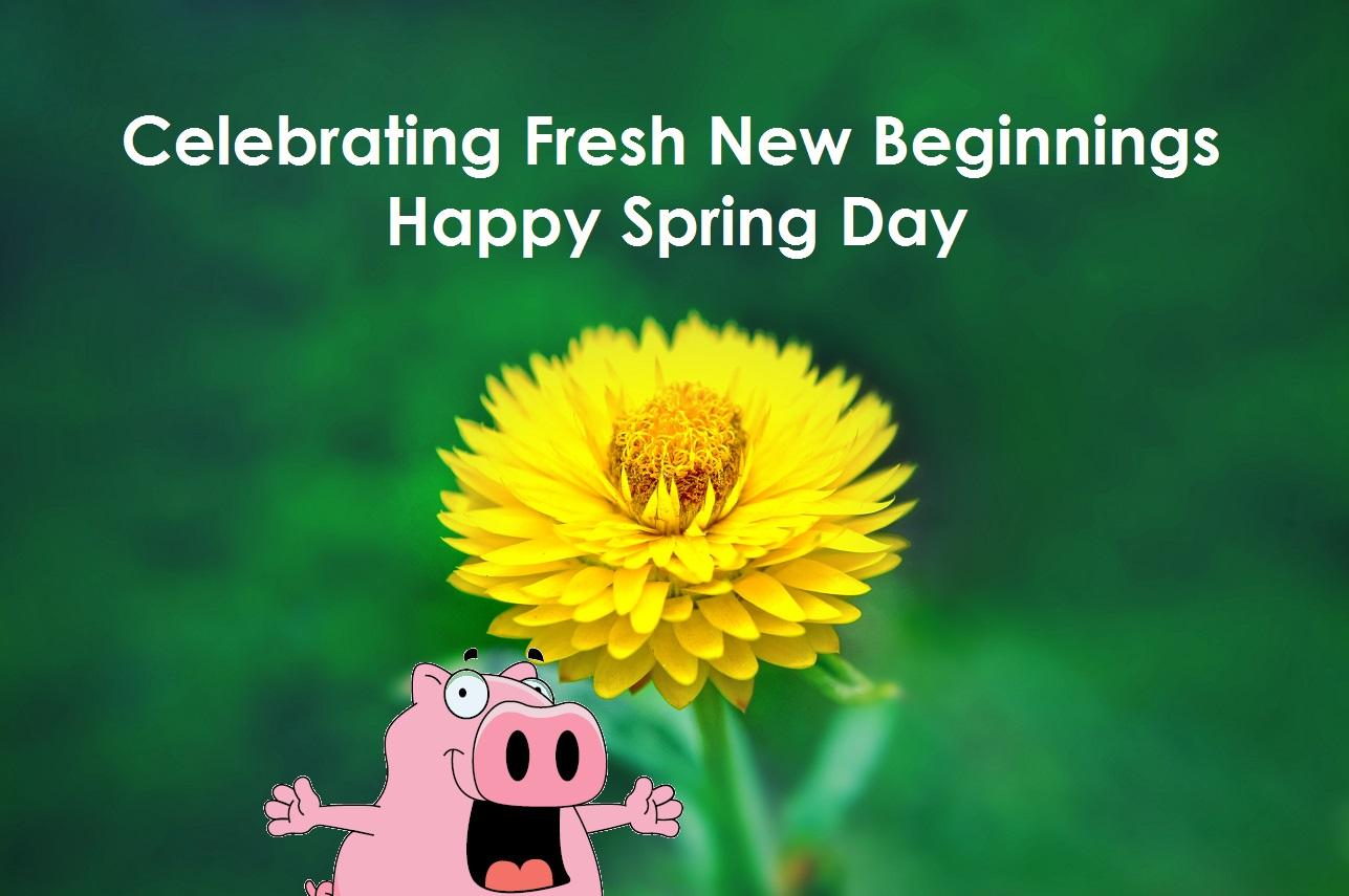 Spring Fresh New Beginnings This Little Piggy